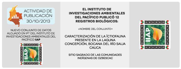 Actividad de publicación 30/10/2013