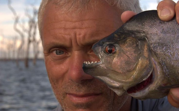 Jeremy Wade: the underwater detective hunting river monsters - Telegraph