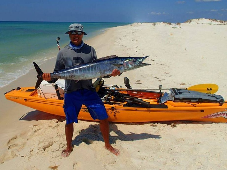 418 best game fish species images on pinterest for Saltwater fishing kayak