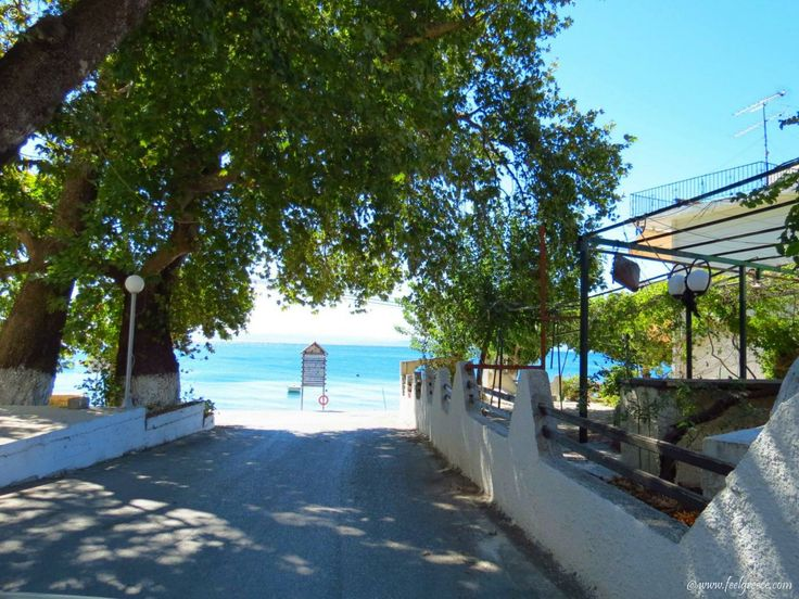 a road to the beach in Ilia - small fishing village with mineral springs - Evia