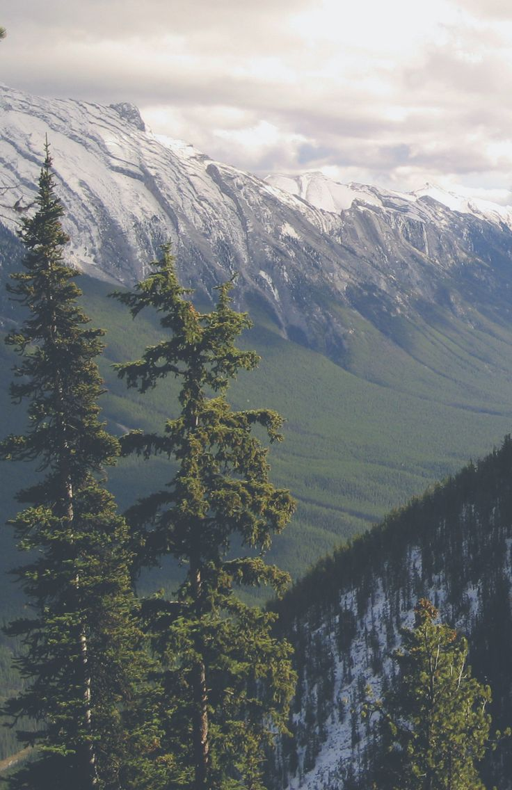 bow river valley, part II. taken by northernistin october, 2007 | ©.