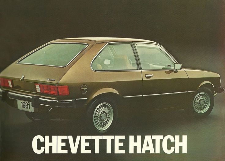 This was my first can, I bought for $100 and was a darker brown a 1981 Chevrolet Chevette