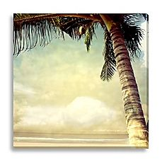 Bed Bath Beyond Palm Tree Canvas Print