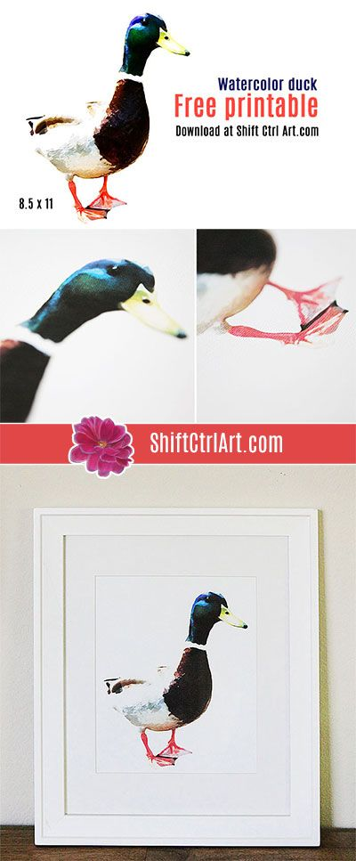 Watercolor duck - free printable and how to make your own watercolor image
