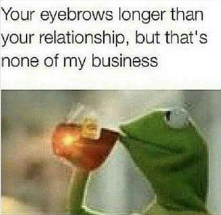 Your eyebrows longer than your relationship, but that's none of my business. - Kermit the Frog #ButThatsNotMyBusiness