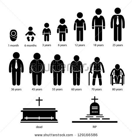 27 best stages of human life images on Pinterest