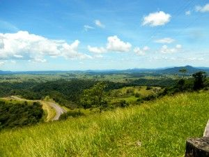 We spent the day discovering the beautiful rainforests and waterfalls that lye within the Atherton Tablelands in the Northeast region of Queensland, Australia. http://thelifeoutside.com/2013/04/22/best-tour-cairns-australia/