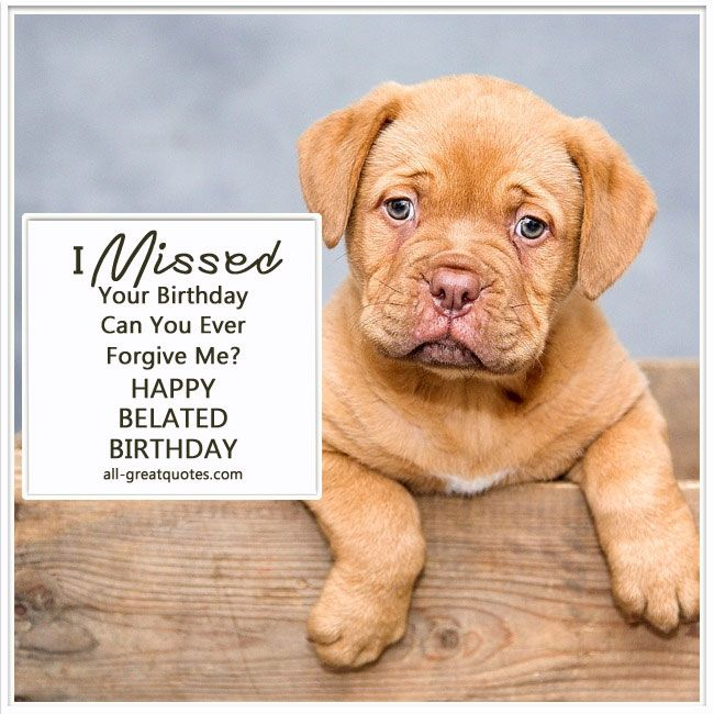 I Missed Your Birthday - Can You Ever Forgive Me? Happy (Belated) Birthday | all-greatquotes.com