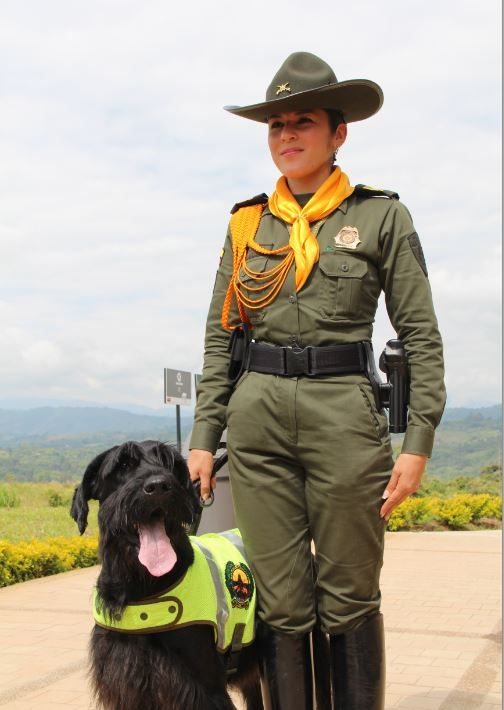 60 best mujeres polic a images on pinterest female cop for Portal de servicios internos policia