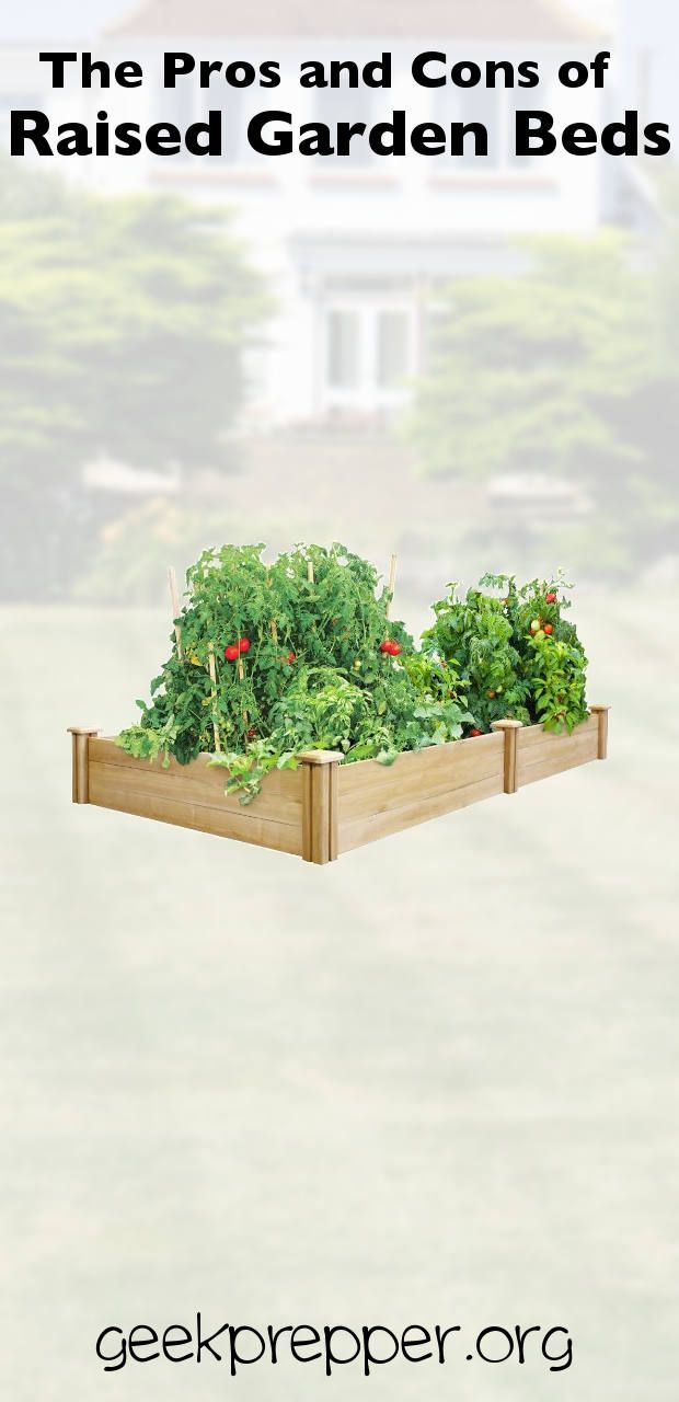 I know it's tempting to grab your rototiller or hoe and dig up a quick garden but raised garden beds can yield more benefits in the long run. geekprepper.org