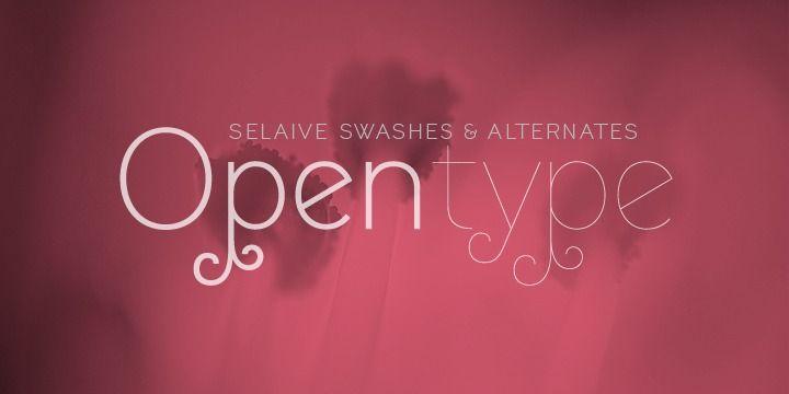 Selaive - Webfont & Desktop font « MyFonts