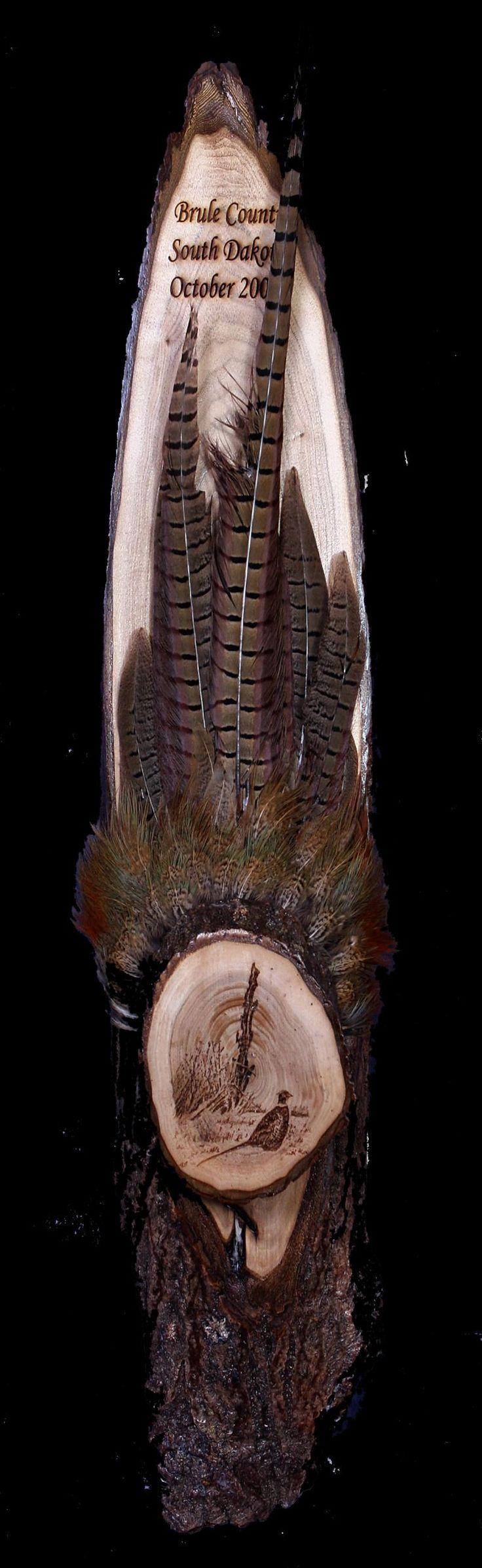 pheasant hunting  springbrooklaser.com