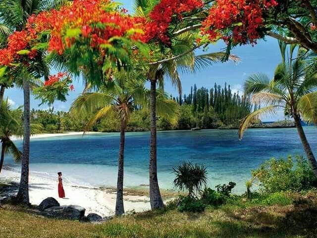 Maré, îles Loyautés, Nouvelle-Caledonie.