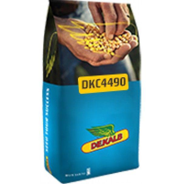 PORUMB DKC 4490