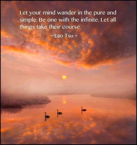 Let your mind wander.....Lao Tsu