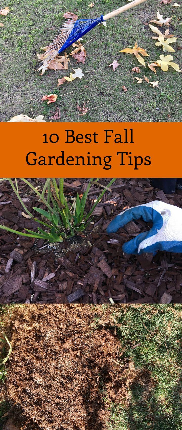 1031 best gardening images on pinterest gardening landscaping