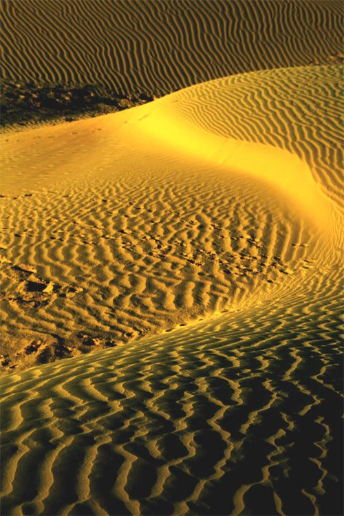 Golden Sand Dunes, Khuri, Rajasthan