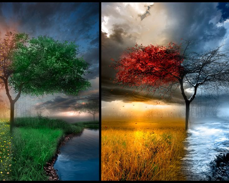 Winter Spring Summer Fall Home Images Free Download Wallpaper Spring Summer Autumn Winter