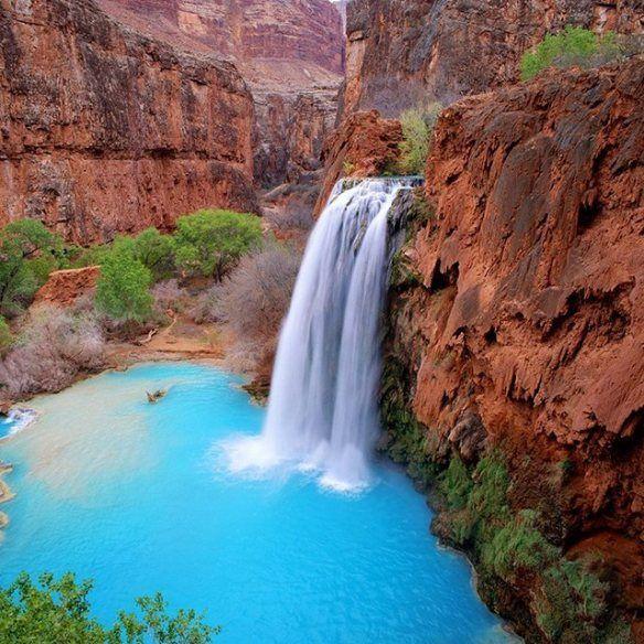 Havasu Falls, Arizona: Swim Hole, Buckets Lists, Arizona Usa, Grandcanyon, Havasupai Fall, National Parks, Grand Canyon Arizona, Roads Trips, Havasu Fall