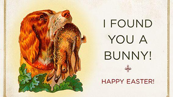 Happy Easter eCards - Hippity Hoppity Funny Goodness - JibJab.com