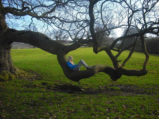 Tree. by Emmarawwrr., via Flickr
