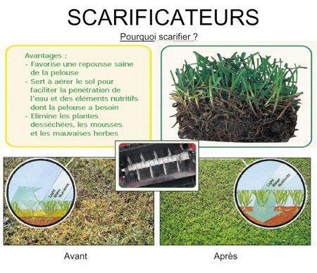 Viac ako 20 najlep ch n padov na pintereste na t mu scarifier pelouse scar - Scarificateur pour pelouse ...