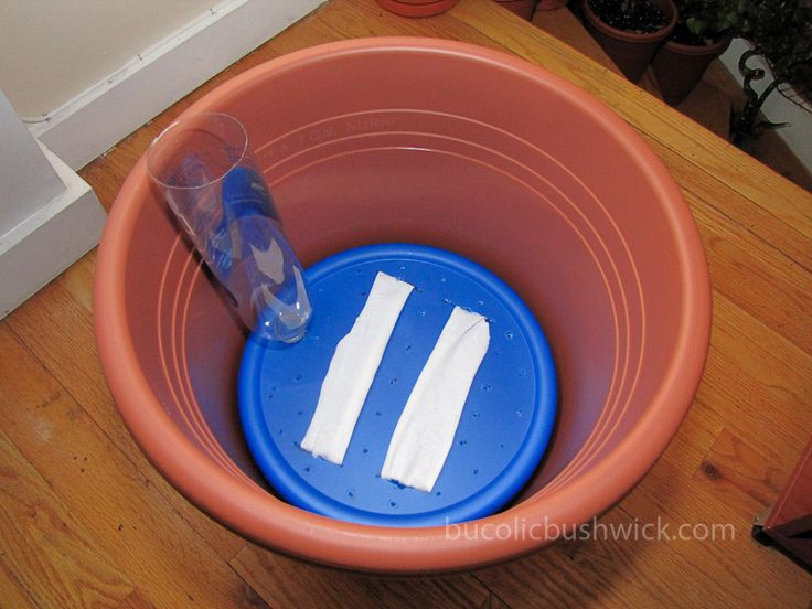 Make Self Watering Pots | Convert a Standard Planter into a Self Watering Container