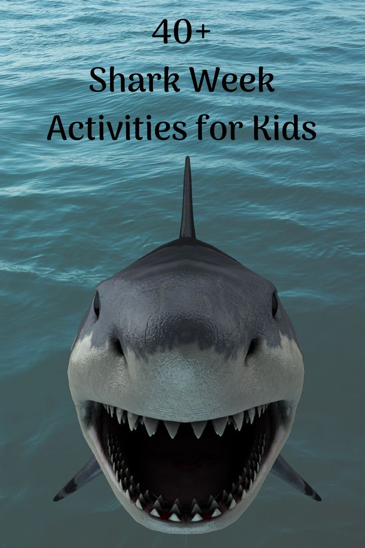 The 40 Coolest Shark Activities Crafts And Games Shark Activities Shark Games For Kids Activities For Kids [ 1102 x 735 Pixel ]