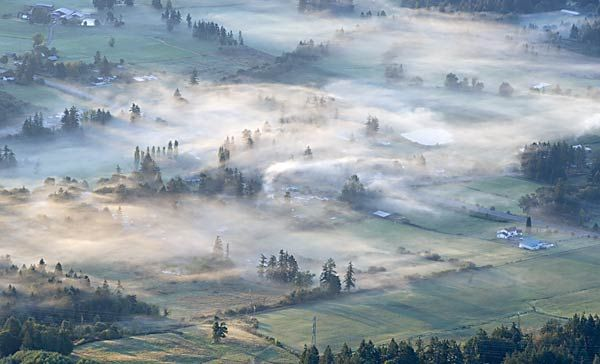Cowichan Valley in mist