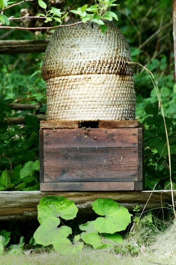 Old beehive