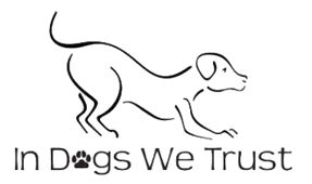 Dog Obedience Training, Group Obedience Classes | London Ontario