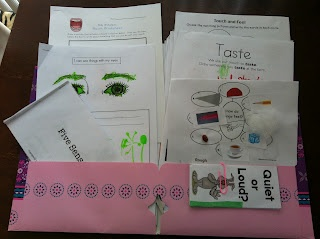 The Five Senses unit - lots of printables and experiments. From: Rockabye Butterfly