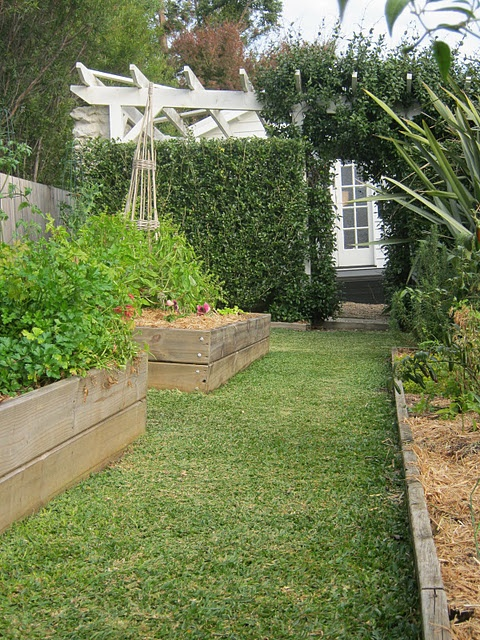 Raised beds, green grass.: Gardens Veggie