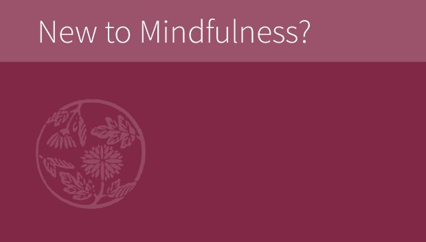New to Mindfulness? Learn more about our programs and offerings. UMASS - YES PLEASE