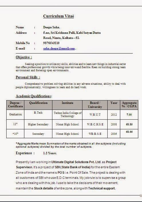 example of an excellent cv Beautiful Excellent Professional - Cv Example