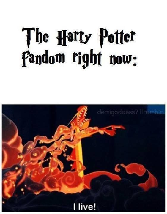 Fantastic Beasts and Where to Find Them. The Harry Potter Fandom is forever. Always.