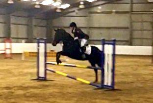 @Lori Sportelli Solent Team Solent Equestrian