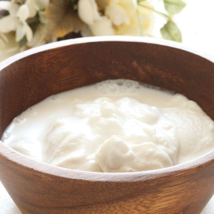 Coconut milk yogurt made by the Dash Greek Yogurt Maker (also almond milk yogurt) Several recipes