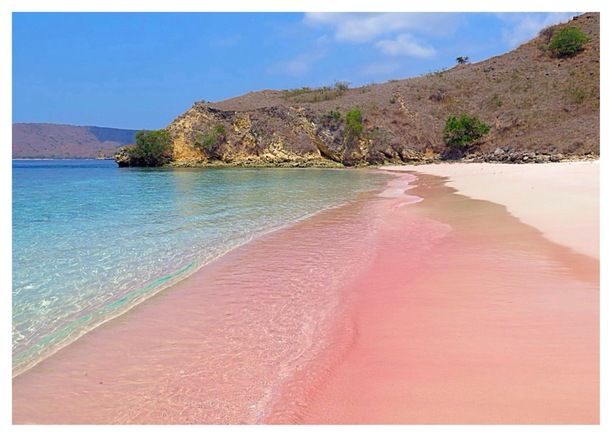 Komodo, Komodo, Indonesia — by Sri Agustin. Komodo Island contains a beach with pink sand, one of only seven in the world. The sand appears pink because it is a...