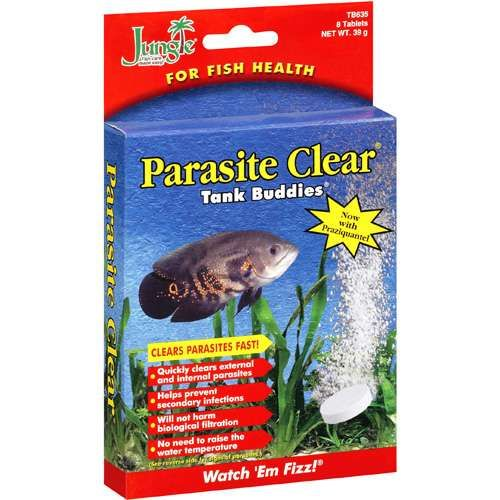 12 best fish diseases and treatment images on pinterest for Fish antibiotics walmart