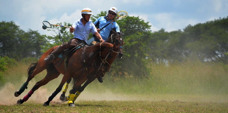 All the top men Polocrosse players came to Antelope Park for a social gathering. A weekend with a lot of speed and adrenalin!
