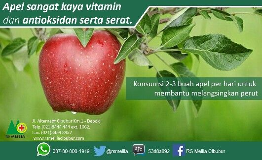 Konsumsi #makan #sehat #buah #serat #asupan #makanan #vitamin #antioksidan #rsmeilia #cibubur #depok #cileungsi #jakarta