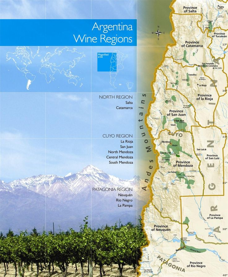 Wine Regions of Argentina - TintoNegro, Altos de San Isidro, Angulo Innocenti, Ernesto Catena Vineyards (Tahaun, Siesta, Padrillos)