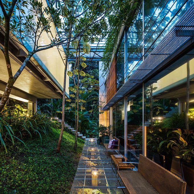 * Естественное озеленение лестницы Низкие лестницы воздействия, которые позволяют растениям расти под ними :: 5osA: [Osaka]