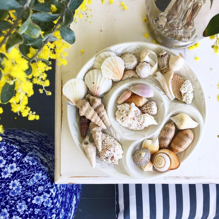 """75 Likes, 3 Comments - Brushed Interiors (@brushed_interiors) on Instagram: """"From the beach and bush. #queenlander #brisbane #brushedinteriors #wattle #shells #australia"""""""