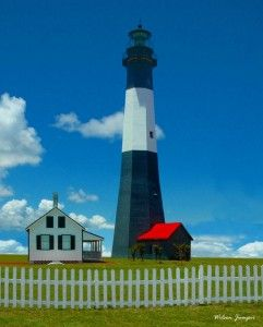 Fun Things To Do In Tybee Island For Kids