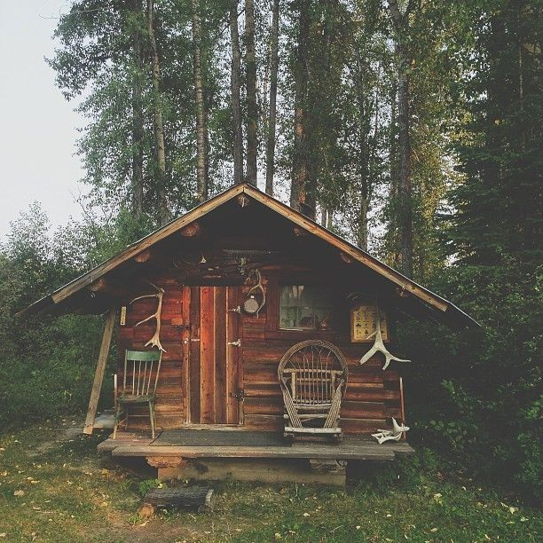 1545 best images about tiny houses on pinterest micro for Tiny hunting cabin