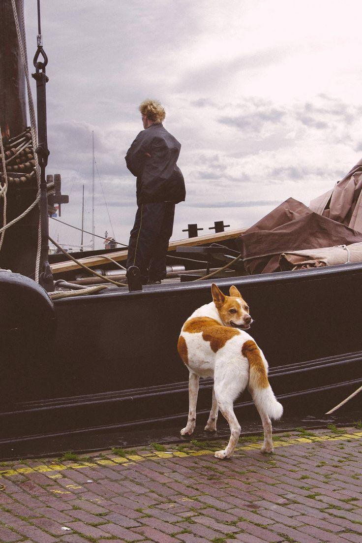 Sailor in Volendam, Holland. https://www.flickr.com/photos/24753676@N07/14890487730/