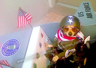 Homemade Air Force Fighter Pilot in Plane Dog Costume... This website is the Pinterest of pet halloween costumes