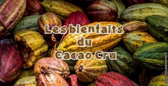 Les bienfaits du cacao cru40g /jour